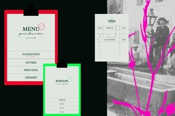 Travail d'identité visuelle par Nadège D., étudiante en design graphique